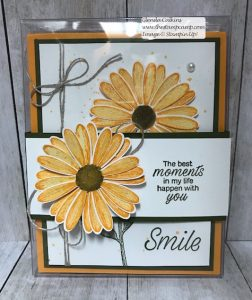 Stampin' Up! In Colors in Daisy Lane All Boxed Up!
