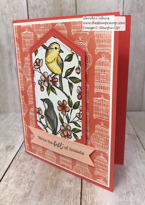 This is my featured stamp set for July. Details can be found here: https://wp.me/p59VWq-abl #thestampcamp #stampinup #freeasabird #birdballad