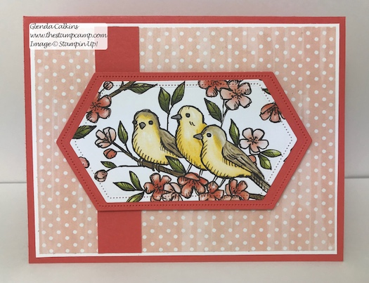 This is the Free As A Bird Bundle from Stampin' Up! This is my featured stamp set for July. Details can be found here: https://wp.me/p59VWq-ab3 #thestampcamp #stampinup #freeasabird #birdballad
