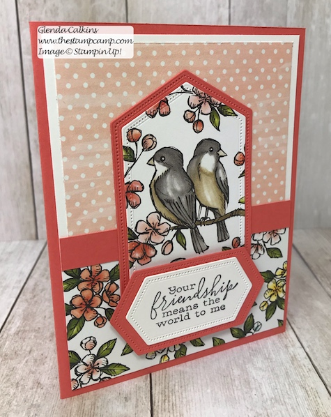 This is my featured stamp set for July. Details can be found here: https://wp.me/p59VWq-ad4 #thestampcamp #stampinup #freeasabird #birdballad