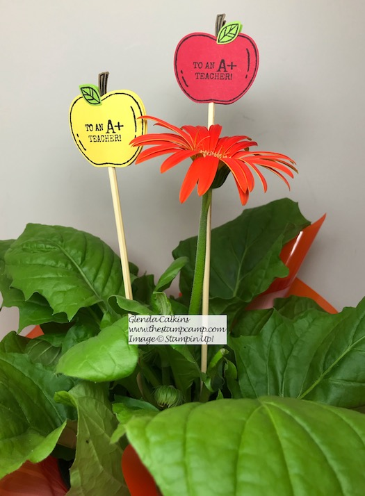 When you give your favorite teacher a gift card make sure to give her a plant as well for her desk with a beautiful plant stake. Details on my blog here: https://wp.me/p59VWq-an7 #stampinup #harvesthellos #thestampcamp #teachergift