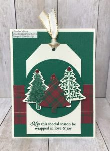 Tag Card and Gift Card Holder Tag