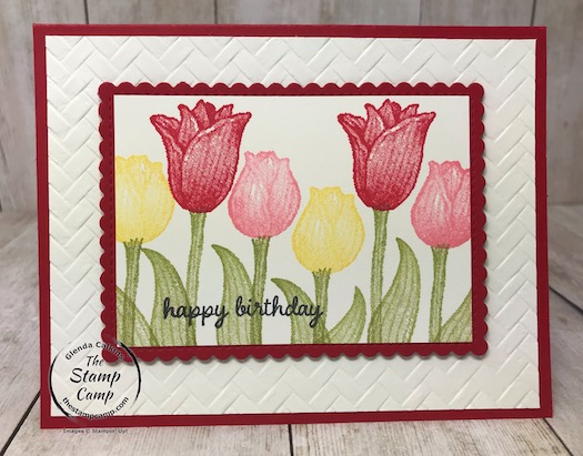 Timeless Tulips with Tulip Builder Punch