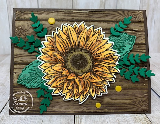 Bonus Card #1 for Celebrate Sunflowers
