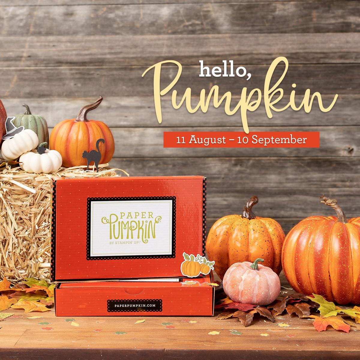 Hello, Pumpkin September's Paper Pumpkin Kit