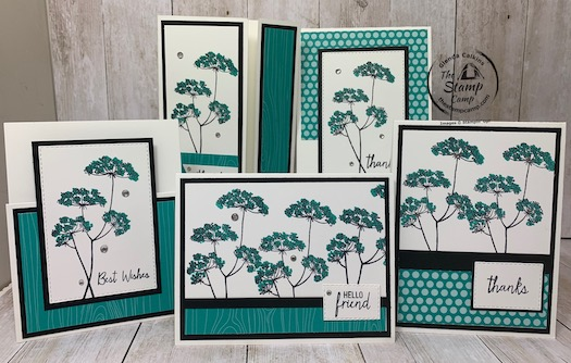Bonus card #3 for my Queen Anne's Lace Featured Stamp Set for September.  Did you know you can get this stamp set for free in September 2020?  Well you can visit my blog for details here: https://wp.me/p59VWq-bts. #stampinup #thestampcamp #queenanneslace