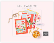 January - June Mini Catalog from Stampin' Up! #thestampcamp #stampinup